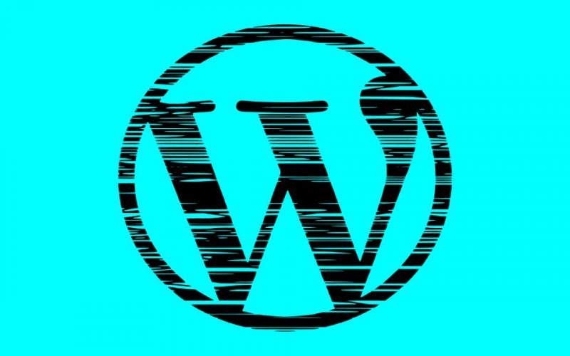 Why WordPress Scores Higher than Other Platforms