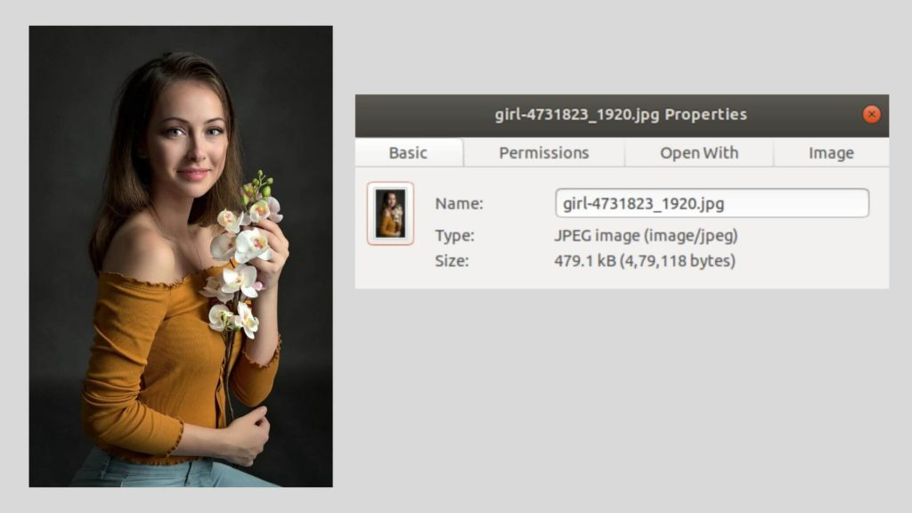 picture details - The Ultimate Guide to WordPress Image Optimization