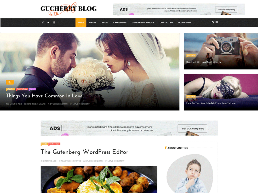 GuCherry Lite - Best WordPress Blog Themes