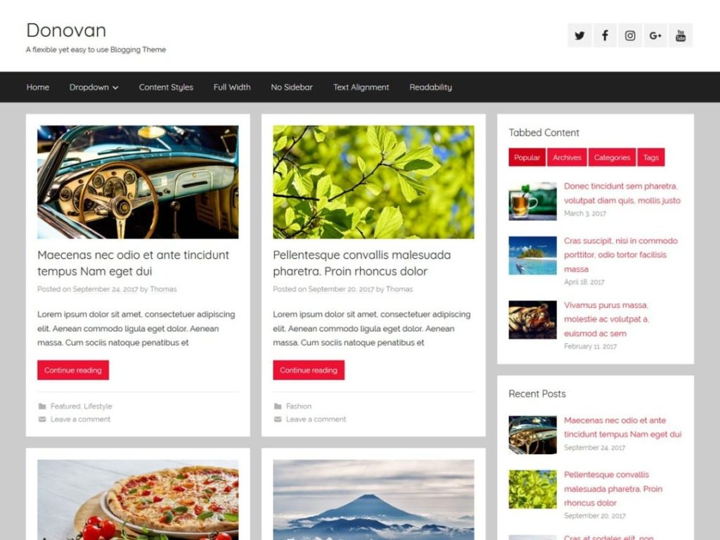 Donovan - Best WordPress Blog Themes