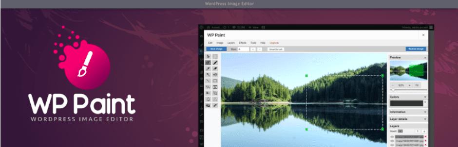 WP Paint - WordPress Image Editor Plugin, 20 Amazing WordPress Plugins for Bloggers for 2020