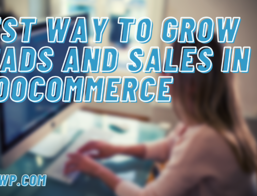 Best Way to Grow leads and Sales in WooCommerce