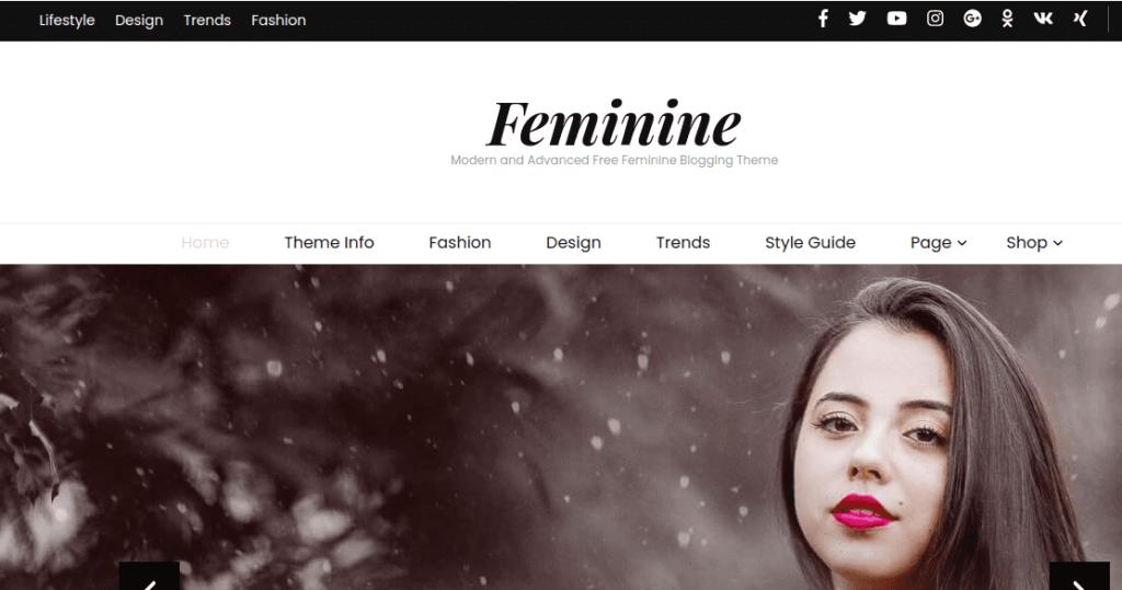 Blossom feminine, Fashion WordPress Themes